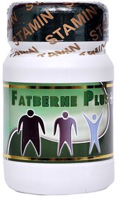 Stamin Nutrition fat burner- 60 capsules