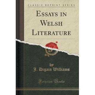 Essays In Welsh Literature (Classic Reprint)
