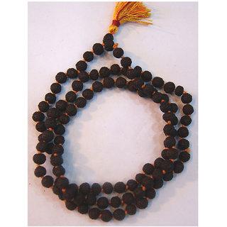 Haridwar Astro 5 Mukhi Rudraksh Mala (108+1 Beads )
