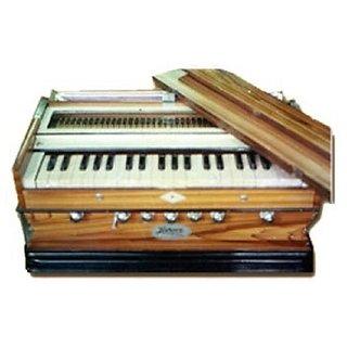 Professional Harmonium