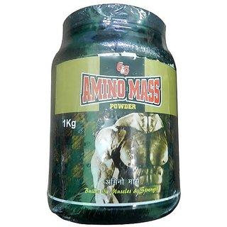 Amino Mass Powder 1kg