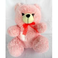 Imported Exclusive Festival Soft Teddy Bears Valentine Special Gift #3281
