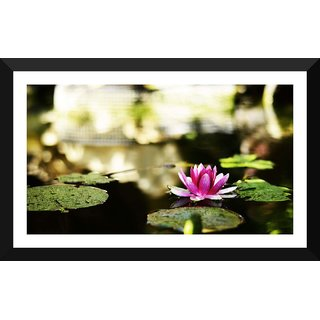 Tallenge - Floral Art - Pond With Water Lilie - Xlarge Size Ready To Hang Framed Digital Art Print On Photographic Paper For Home And Office Decor (17x30 Inches)