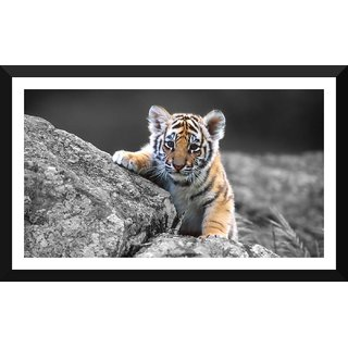 Tallenge - Little Tiger Baby Watching After It Mother - Small Size Ready To Hang Framed Digital Art Print On Photographic Paper For Home And Office Decor (7x12 Inches)