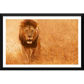 Tallenge - Magnificent Lion - Medium Size Ready To Hang Framed Digital Art Print On Photographic Paper For Home And Office Decor (11x18 Inches)