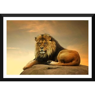 Tallenge - African Lion Resting - Large Size Ready To Hang Framed Digital Art Print On Photographic Paper For Home And Office Decor (16x24 Inches)