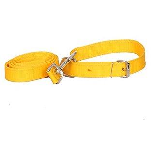 PETHUB High Quality and Standard Collar And Leash -Medium-Yellow