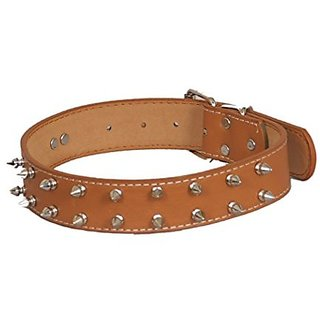 PETHUB Standard Quality Double Row Spike Collar- 1.25 inch- Brown