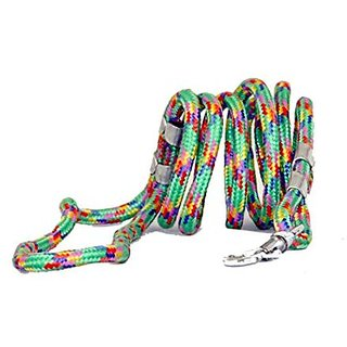 PETHUB High Quality And Stylish Dog Cord leash Small-Green