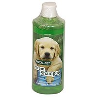 PET CLUB51 NATURAL NEEM SHAMPOO -500 ML