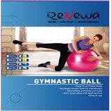 Renewa Anti Burst Gym Ball With Foot Pump 75Cm (Yellow)