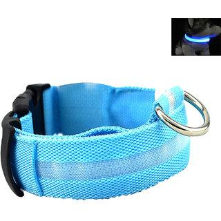 Futaba Nylon Pet Glow in Dark LED Collar Night Safety - Blue - Large