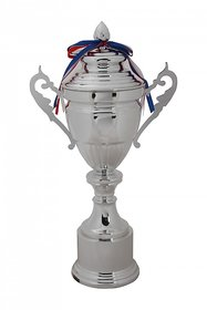 Trophy silver Base