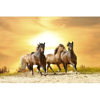 Tallenge - Running Horses - Small Size Unframed Rolled Digital Art Print On Photographic Paper For Home And Office Dcor (8x12 inches)