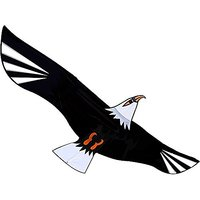 American Kite High Quality Eagle Kite For Kids And Adul