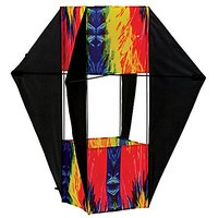 In The Breeze Tie Dye Winged Box Kite