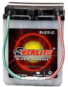 Everlite Two Wheeler Battery