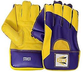 CW Wicket Keeping Glove