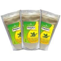 Herbal Hills Gokshur Powder - 300 G Pack Of 3