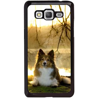 Fuson Designer Phone Back Case Cover Samsung Galaxy Grand Max G720 ( A Portrait Of A Dog )