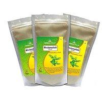 Herbal Hills Bhuiamlaki Powder  - 300 G Pack Of 3