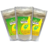 Herbal Hills Guduchi Powder  - 300 G Pack Of 3