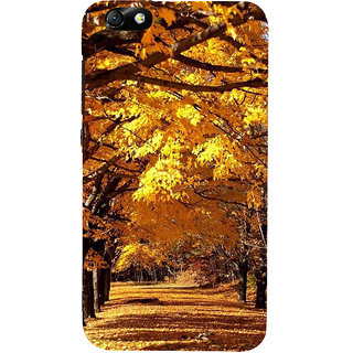 IFasho Designer Back Case Cover For Huawei Honor 4X :: Huawei Glory Play 4X (Photography Darkroom Genealogical Photography Art)