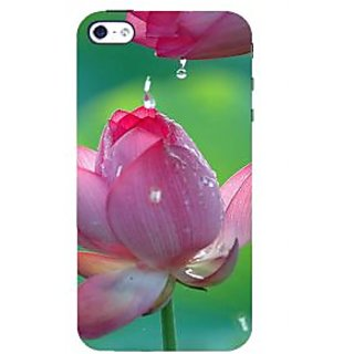 IFasho Designer Back Case Cover For Apple IPhone 4S (C Design Patterns And Derivatives Pricing Mark Joshi  Girly Footwear)