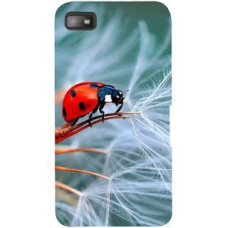 IFasho Designer Back Case Cover For BlackBerry Z10 (Butterfly Animal Wild Buck Pest)