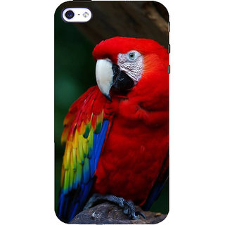 IFasho Designer Back Case Cover For   4 (au Bird aque Maxico America)
