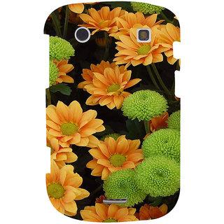 IFasho Designer Back Case Cover For BlackBerry Bold Touch 9900 :: BlackBerry Dakota :: BlackBerry Magnum ( Wedding Accessories Shoes Nanjing Bhilai Nagar Music Love Tiruvannamalai)