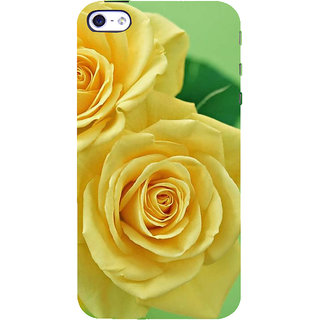 IFasho Designer Back Case Cover For   5 (Renanthera Imschootiana Rose Brooch Rose Soap Elect Establishment Society Celebrity)