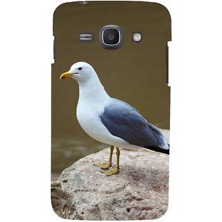 Ifasho Designer Back Case Cover For Samsung Galaxy Ace 3 :: Samsung Galaxy Ace 3 S7272 Duos  :: Samsung Galaxy Ace 3 3G S7270 :: Samsung Galaxy Ace 3 Lte S7275 (Bird Cirebon Indonesia Bird Toys)