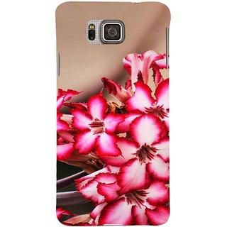 Ifasho Designer Back Case Cover For Samsung Galaxy Alpha :: Samsung Galaxy Alpha S801 ::  Samsung Galaxy Alpha G850F G850T G850M G850Fq G850Y G850A G850W G8508S :: Samsung Galaxy Alfa ( Wedding Reception Beaded Jewlery Amravati Rap Music Bhuj)