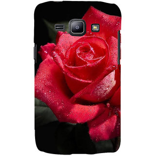 Ifasho Designer Back Case Cover For Samsung Galaxy J2 J200G (2015) :: Samsung Galaxy J2 Duos (2015) :: Samsung Galaxy J2 J200F J200Y J200H J200Gu  (Cymbidium Goeringii Rose Cookie Maker Rose Tiara Head Bloom Best Bud)