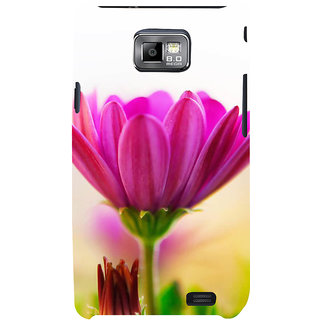 Ifasho Designer Back Case Cover For Samsung Galaxy S2 I9100 :: Samsung I9100 Galaxy S Ii ( Kit For Studentswedding Ideas Kit For Studentsdrawing Kit Kit For Students Copy Kit For Students Easel Stand Kit For Students Hall Decorative)
