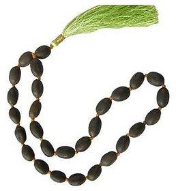 Lotus 27 Seeds Jaap Mala