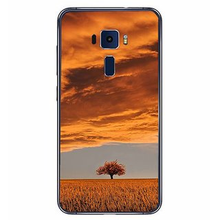 Fuson Designer Phone Back Case Cover Asus Zenfone 3 ( Through The Eyes Of Mother Nature )
