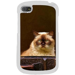 Fuson Designer Phone Back Case Cover Blackberry Q10 ( Cat Locked Inside )