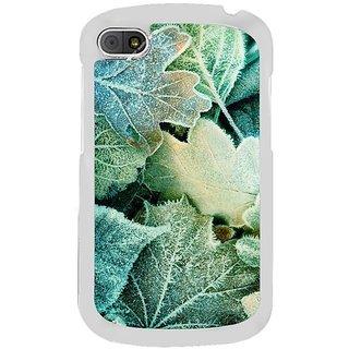 Fuson Designer Phone Back Case Cover Blackberry Q10 ( Artistic Depiction Of Beautiful Leaves )