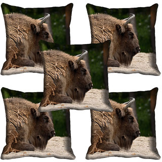 meSleep Wild Life Digital printed Cushion Cover (20x20) - 20CD-65-160-05