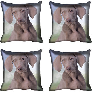 meSleep Dog Digital printed Cushion Cover (18x18) - 20CD-68-216-04