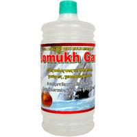 Altek -Holy (Pawan Ganga Jal From Gomukh)- 1-Liter Bottle (Set of 3) (gangajal-1ltr-3)