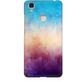 RAYITE Colourful Wall Premium Printed Mobile Back Case Cover For Vivo V3 Max