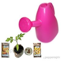 Watering Can Flower Seeds And Root Plugs Combo Offer
