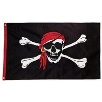 In The Breeze I'm A Jolly Roger Applique Grommet Flag,
