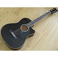Guitar DOLPHIN DT 1 CM