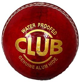 Sports Red Leather Cricket Ball