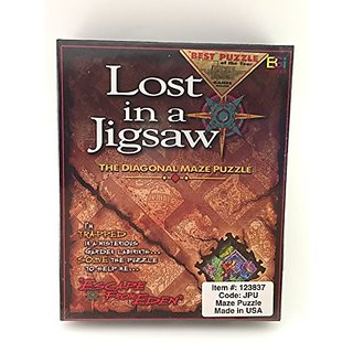 Lost In A Jigsaw: The Diagonal Maze Puzzle