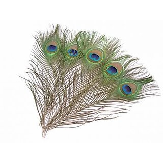 Big Size Beautiful Natural Peacock Feathers 10piece 36inch for Pooja